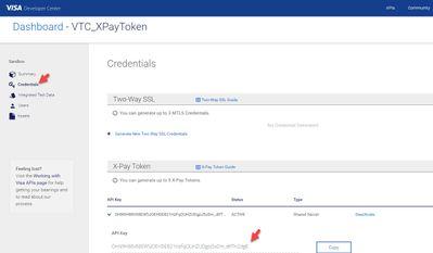 X-Pay-Token-Credentials.jpg